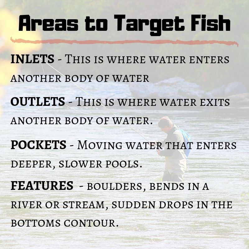 areas to target fish graphic