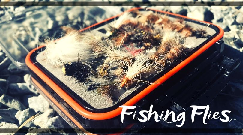 fly box with fishing flies