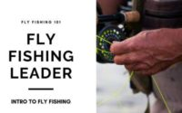 fly fishing leader