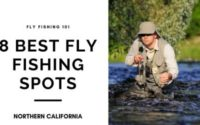 fisherman fly fishing in creek